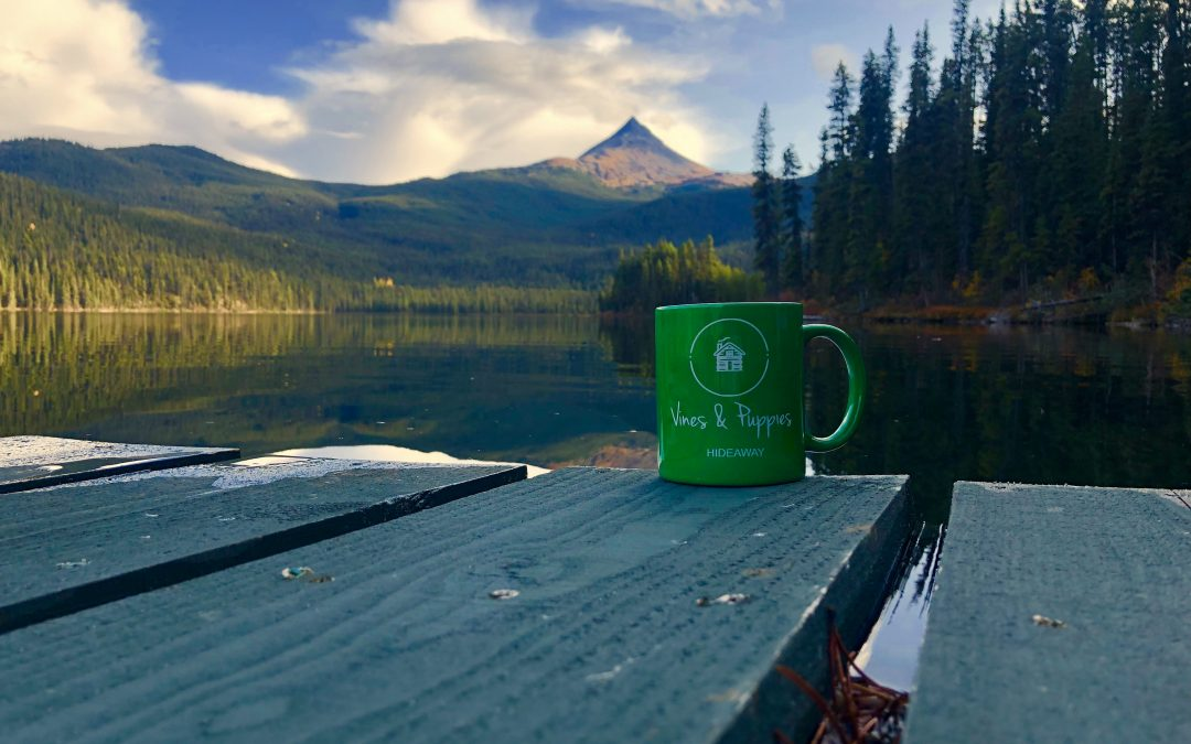 Morning coffee on Vines Lake.